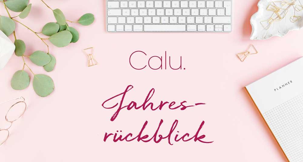 Rosa Schreibtischhintergrund auf dem Calu Jahresrückblick steht