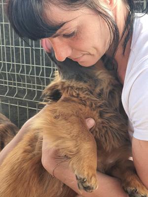 Eine Pflegerin mit dunklen Haaren hält einen brauen Hund in ihren Armen.
